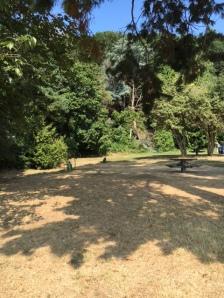 park side