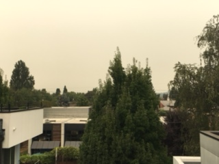 rooftop view toward seattle at 3pm